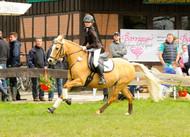 Wesel-Obrighoven Ponyturnier 2016
